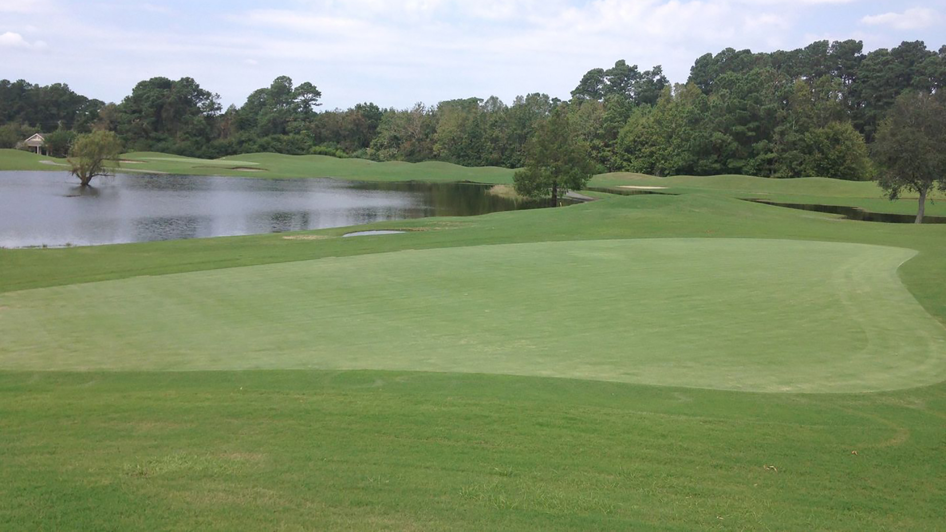 lion's paw golf course