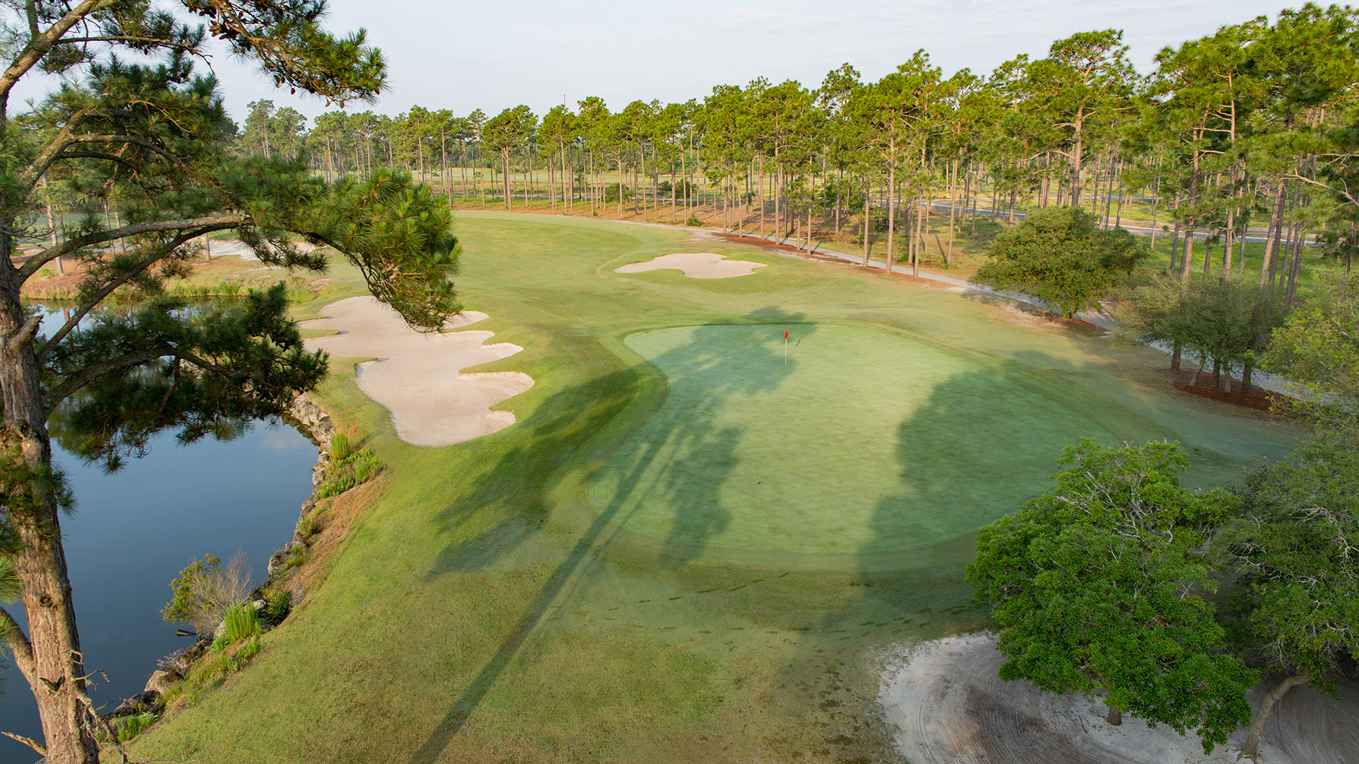 Tigers Eye - Hole 8-2